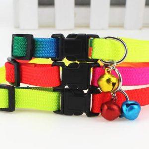 Cat Rainbow Colourful Puppy collars