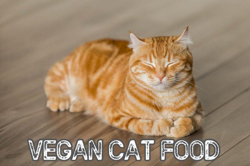 Vegan Cat Food