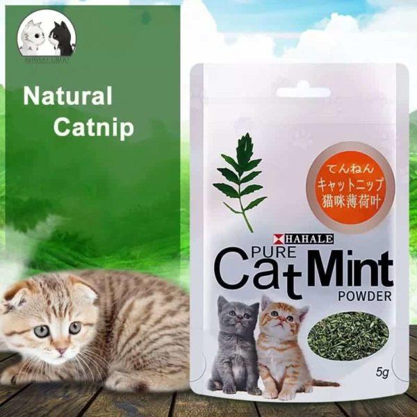 Natural Hahale Catnip Powder