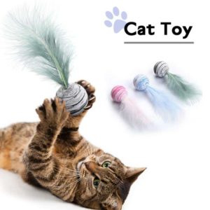 Cat Toy Feather Ball