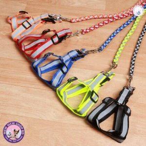 dog harness reflective
