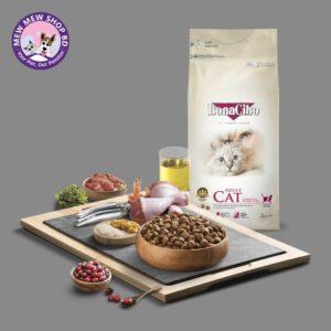 Bonacibo Kitten dry food