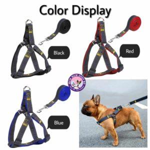 denim harness