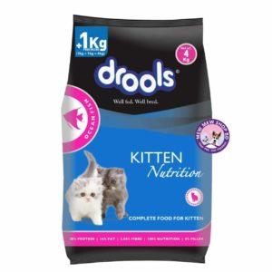 Drools Ocean Fish Adult Cat Food 3kg +1kg Free